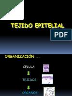 Tejido Epitelial Clases