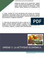 ACTIVIDAD ECONOMICA