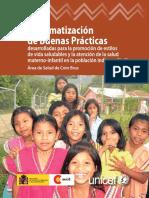 Sistematización buenas prácticas Ngobe.pdf
