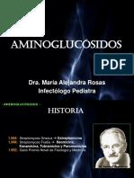 Aminoglucosidos Quinolonas y Macrolidos