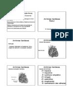Arritmias Cardíacas PERG PROVA