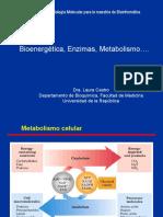 Bio Energetic A Enzimas Metab LC