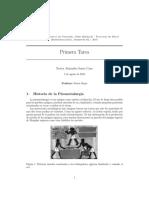 Hidrometalurgia vs. Pirometalurgia