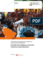 Indigene Rechtsplural ES FINAL