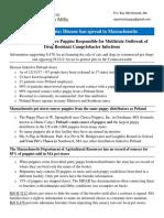 Handout Murphy Created for Legislators