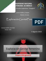 Exploración Genital femenino