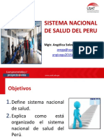 Sistema Nacional Del Peru-2017
