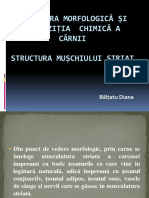 Structura morfologic