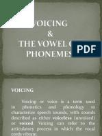 Voicing & Vowels