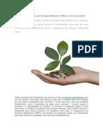 O Que é Pagamento Por Serviços Ambientais