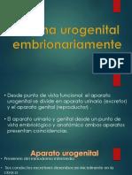Expo Urogenital
