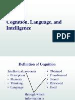 6.Cognition