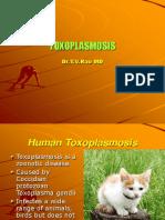 4125248-Toxoplasmosis.ppt