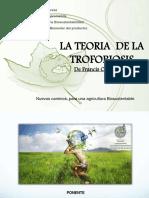 Monografía Del Aguacate