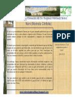 ficha tecnica noni.pdf