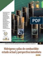 ICAI_Hidrógeno y Pilas de Combustible. Estado Actual y Perspectiva Inmediata.pdf