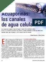 Acuaporinas y la Hidratación Peter Agre Premio Nobel 2003