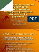 Proc Com Panor Mpfn