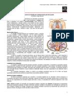 SEMIOLOGIA II 03 - Semiologia Do Aparelho Cardiovascular Aplicada