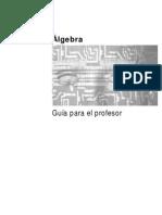 909003. Ipn Algebra Maestro-guia Del Profesor