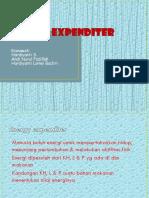 Energi Expenditur2