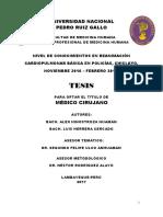 TESIS ROMAIN.pdf