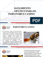 Ensayo Parvovirus Tratamiento Homeopatico