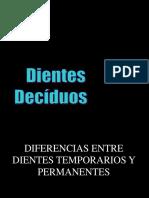7. Diferencias Entre T y P