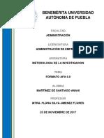 resumen-formato apa.docx