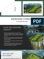 MONTANE FORESTS