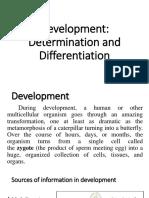 06-Determination and Differentiation