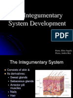 07-Development of Integumentary System