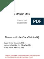 UMN dan LMN