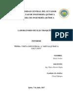 INFORME VISITA-GALVANO.docx