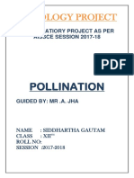 Pollination class 12 biology project