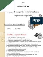 2015 Audit Bancar BANCAS Suport de Curs