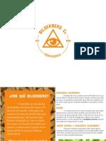 presentacion_bildi