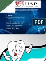 Gp 2)Pulpa y Periodonto (1)