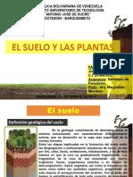 Los Suelos y Las Plantas