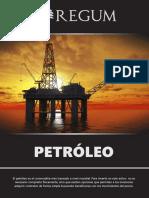 Reporte Petroleo