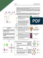 ResumenEnlace.pdf