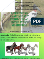 ANATOMIA Diferencias Anatomicas y Fisiologicas de Las Aves y Mafiferos