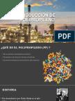 Presentación Polipropileno Flores Guillermo