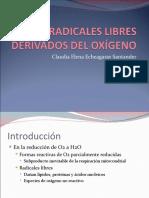 radicaleslibresderivadosdeloxgeno-120426232031-phpapp02