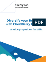 Diversify Your Business With CloudBerry Backup