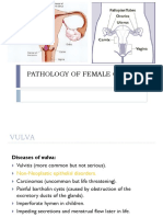Tumor of Female Genital System