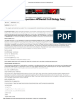 Construction and Importance of Daniell Cell Biology Essay