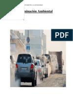 La Contaminación Ambiental(CORREGIDO)