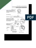 Pemeriksaan Fisik N.cranialis