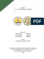 Referat Rhinitis Vasomotor
